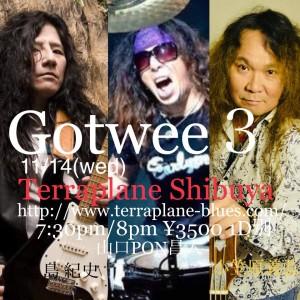Gotwee3